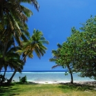 Rarotonga 4 Bedroom Beachfront Bungalow Arorangi Summer Season Stay 5 Pay 4