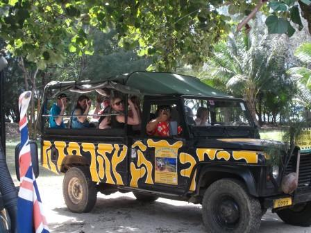 Raro Safari Tours Jeep