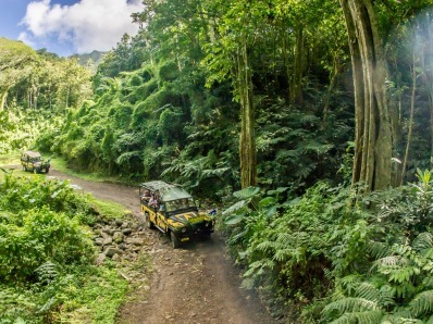 Raro Safari Tours Road
