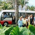 Mangaia Domestic Transfer