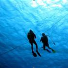 cook island divers2